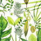 Foliage by Alita  Ong