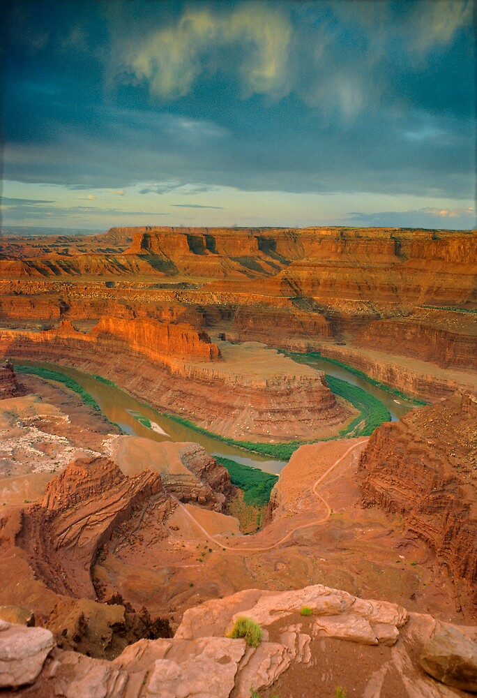 Dead Horse Point-Utah- Colorado River by Steve  Taylor