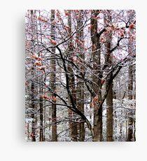 Winter's Last Hurrah Canvas Print