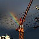 Crane by Digby