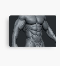 GAY / Male torso Canvas Print