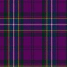 McCartney (Day) Tartan  by Detnecs2013