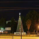 Lighting of the Christmas Tree - Bendigo by djnatdog