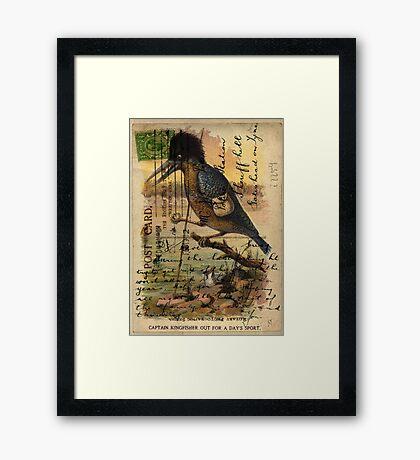 Postcard Kingfisher Framed Print