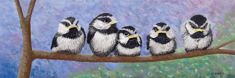 Chickadee Chicks by GeorgeBurr