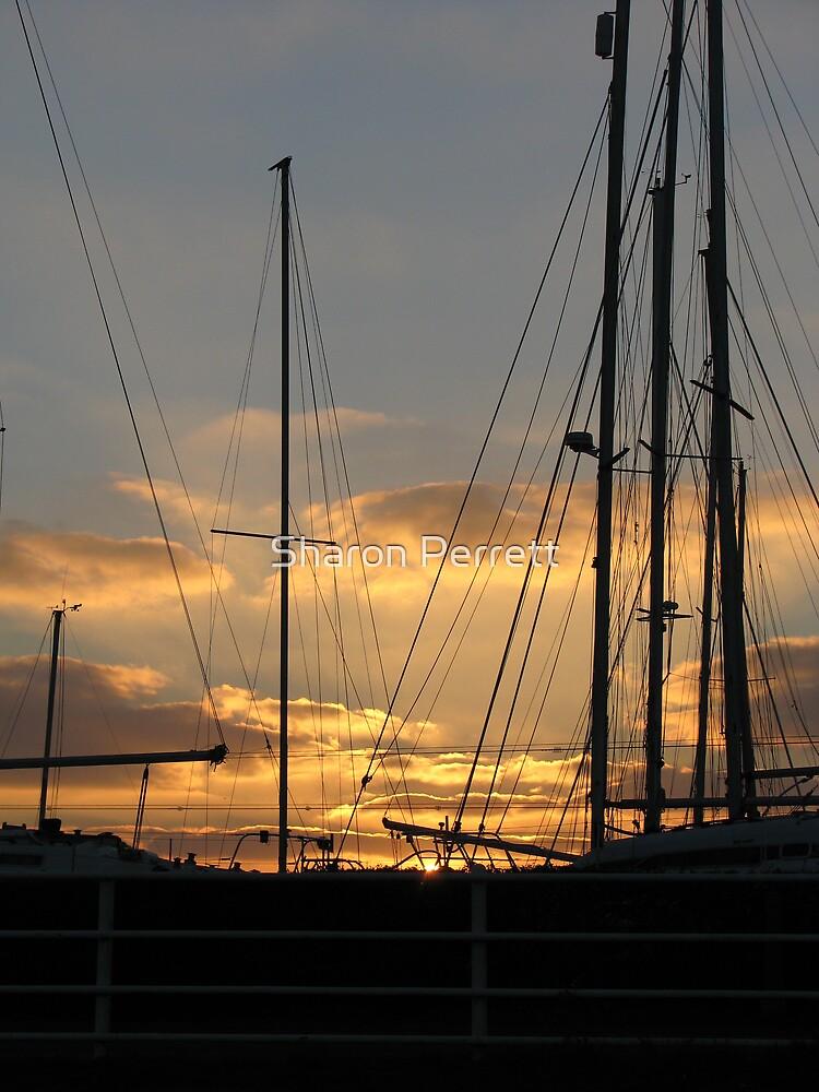 Sunset 13-12-07 by Sharon Perrett