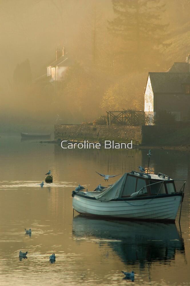 November, River Fowey by Caroline Bland