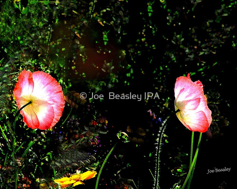 peut s'allumer by © Joe  Beasley IPA