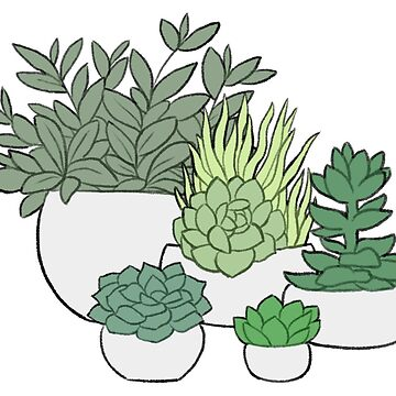 Plants and Succulents by Askeryna