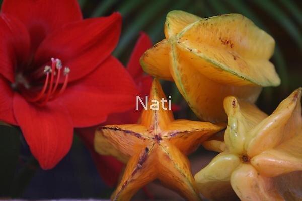 Stars by Nati