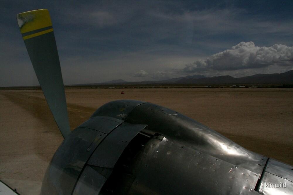 Desert Arrival by kimwild
