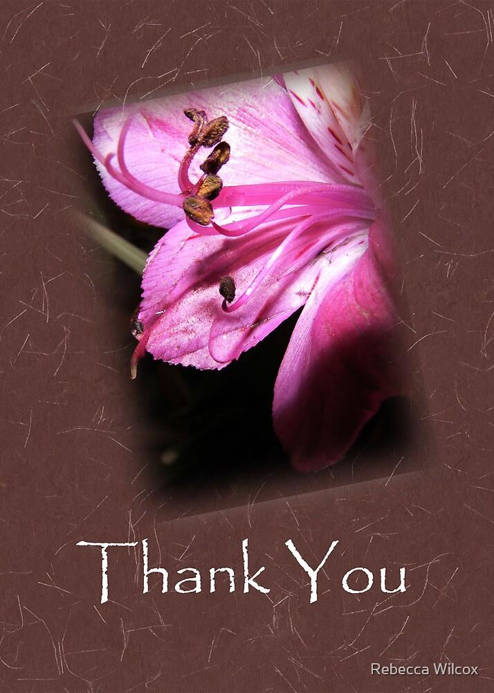 Thanks by Rebecca Brann