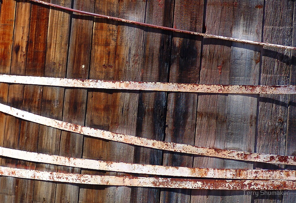 Hoops and Staves by Terry Shumaker