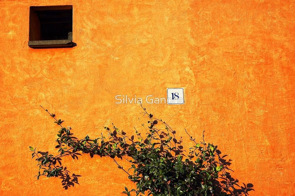 18 on an orange wall by Silvia Ganora
