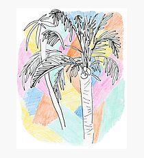 Pastel Palms Photographic Print
