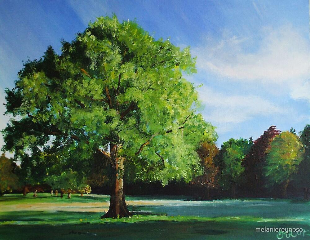Westonbirt Arboretum by melaniereynoso