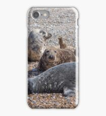 """Blakeney Point Seals"" iPhone Case/Skin"
