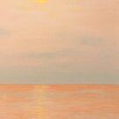 Evening Flight by GeorgeBurr