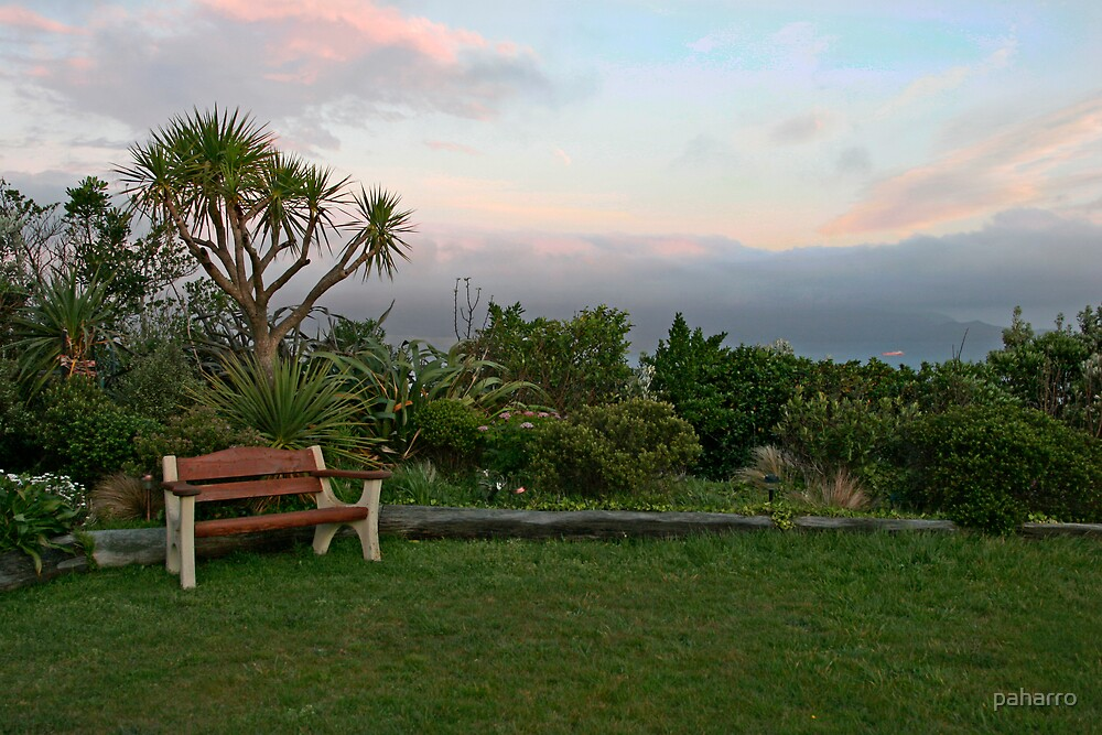 Places to sit 4 by Peter Harrison