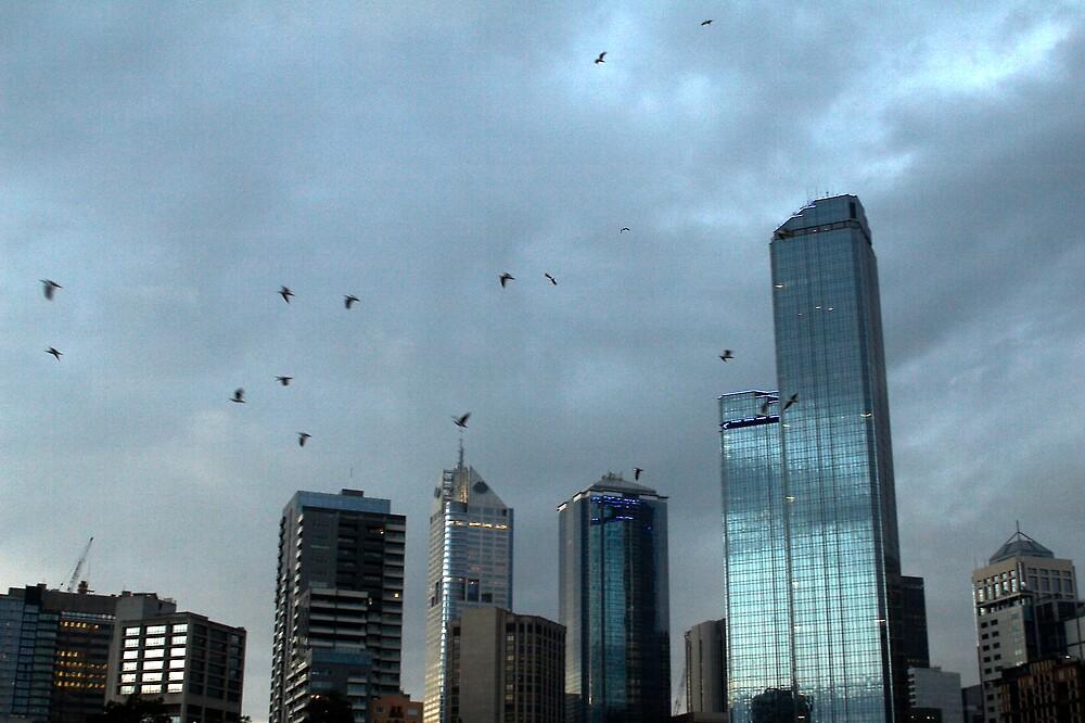 Stormy  Melbourne by Dóra  Varga Lencsés