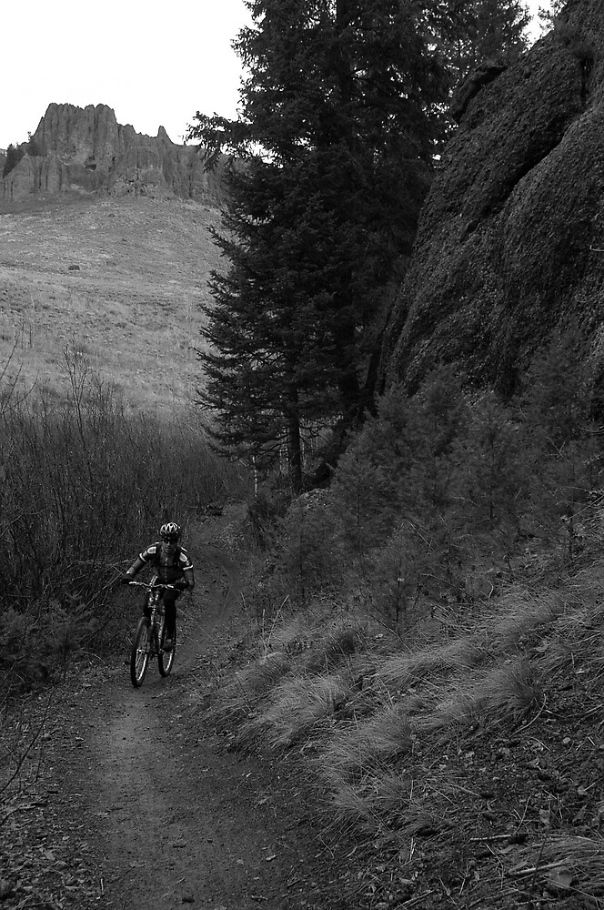Ketchum trail in bw by Dan Paulson