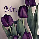 Mr. Purple Tulips by Sherry Hallemeier