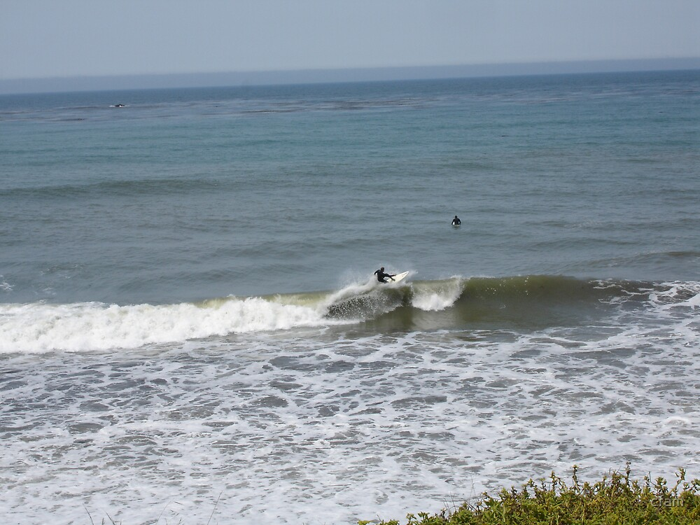 Catchin' a wave... by cfam