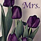 Mrs. Purple Tulips by Sherry Hallemeier