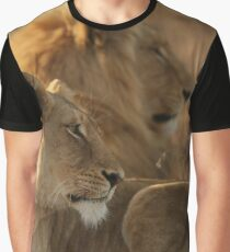 Lions under warm African Sun Graphic T-Shirt