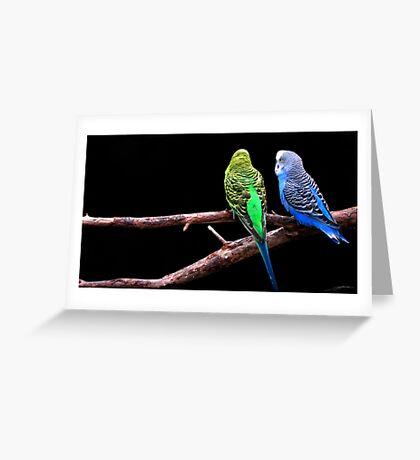 Branch Sharing Greeting Card