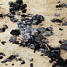 Charcoal on the lake beach by Bluesrose