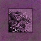 Purple Rosey Delight by Sandra Foster