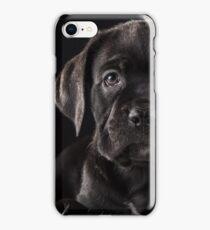 Labrador Negro iPhone Case/Skin