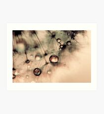 Droplets of gold Art Print