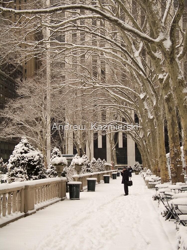 Bryant Park Snow by andykazie