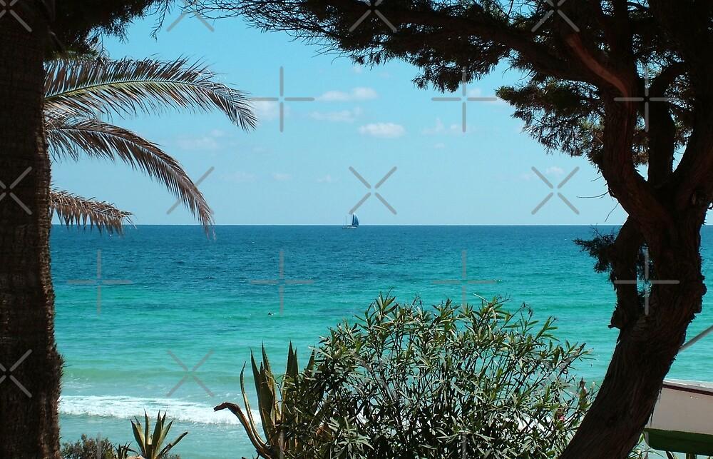 Cala Nova, Ibiza by Tom Gomez