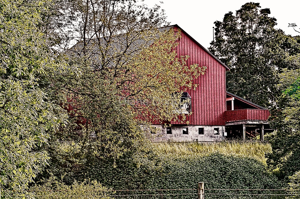 The Barn at the End of the Trail by Diane Dority