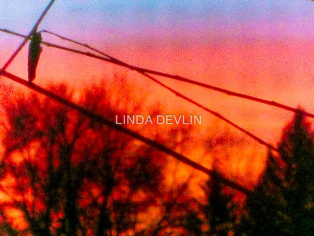 Dawn Christmas 2007 by LINDA DEVLIN