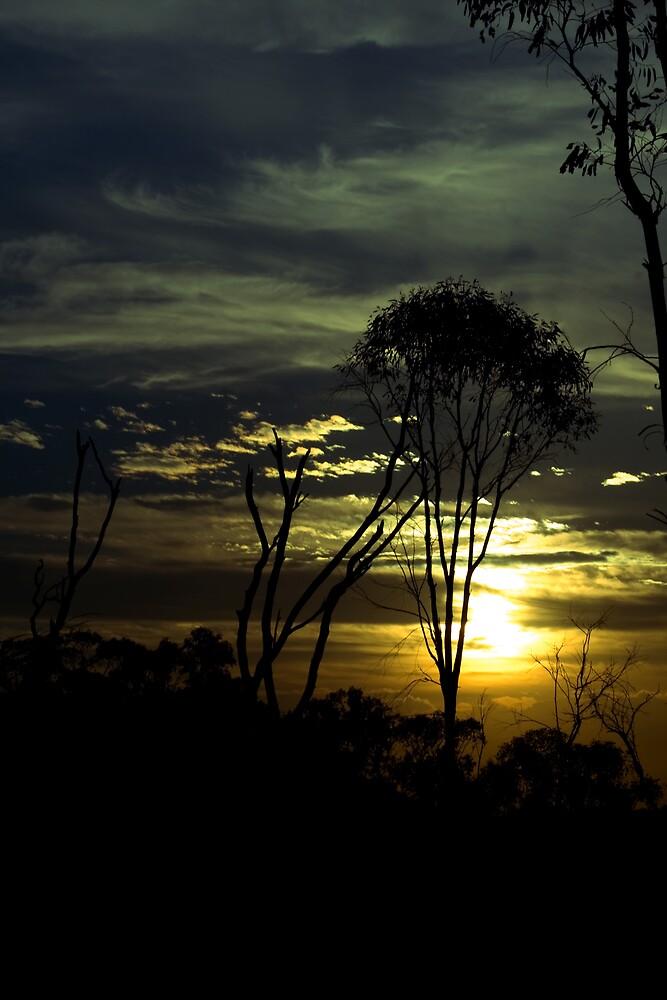 Willans Hill Sunset by Belinda Fraser