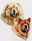 Chow Chow by BarbBarcikKeith
