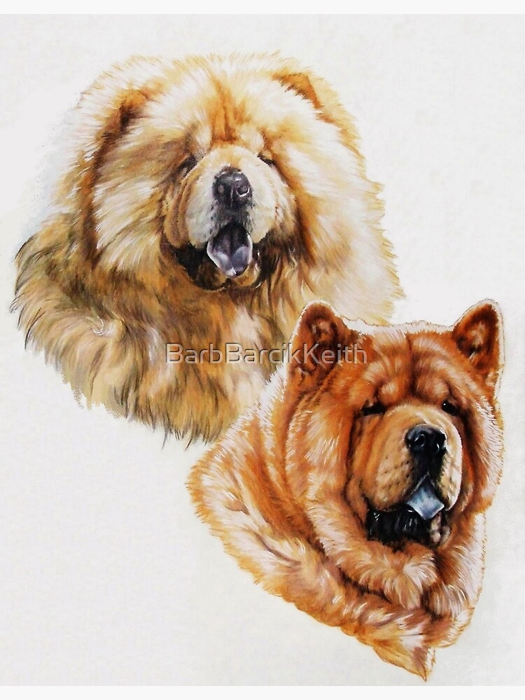 Chow Chow Portraits in Color by BarbBarcikKeith