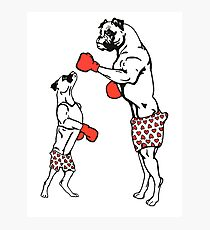 Boxers wear boxers Photographic Print