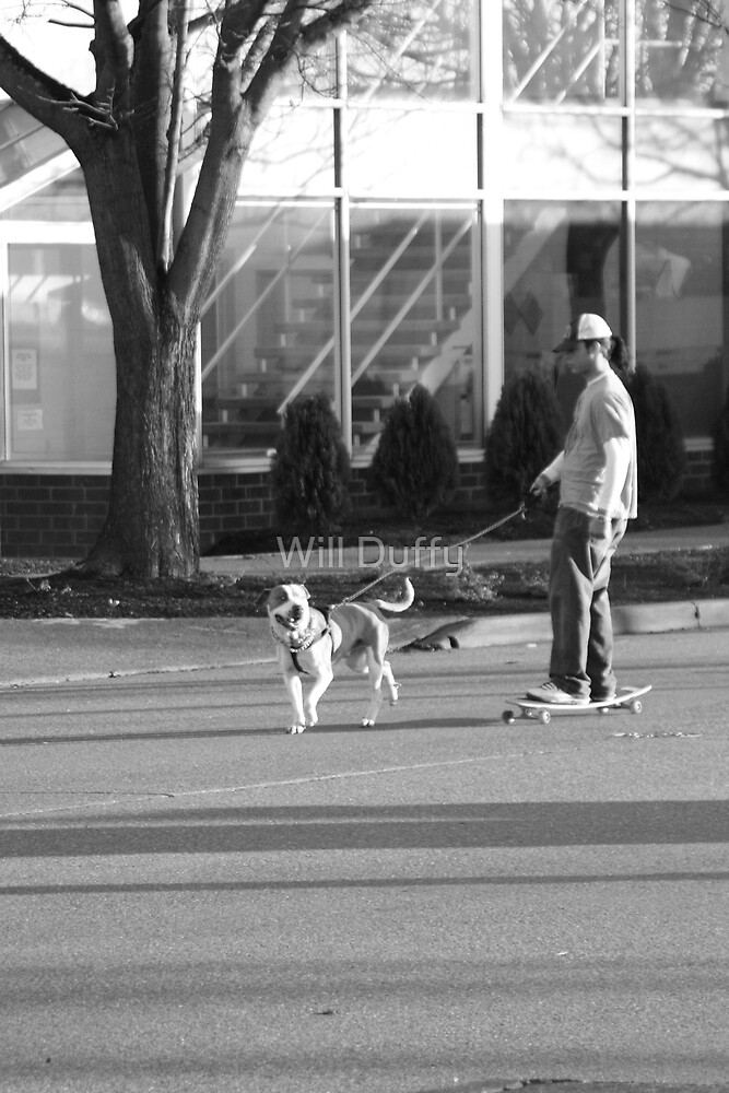 walking the dog by Will Duffy