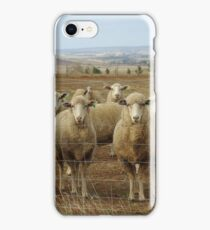 What are ewe's looking at? iPhone Case/Skin
