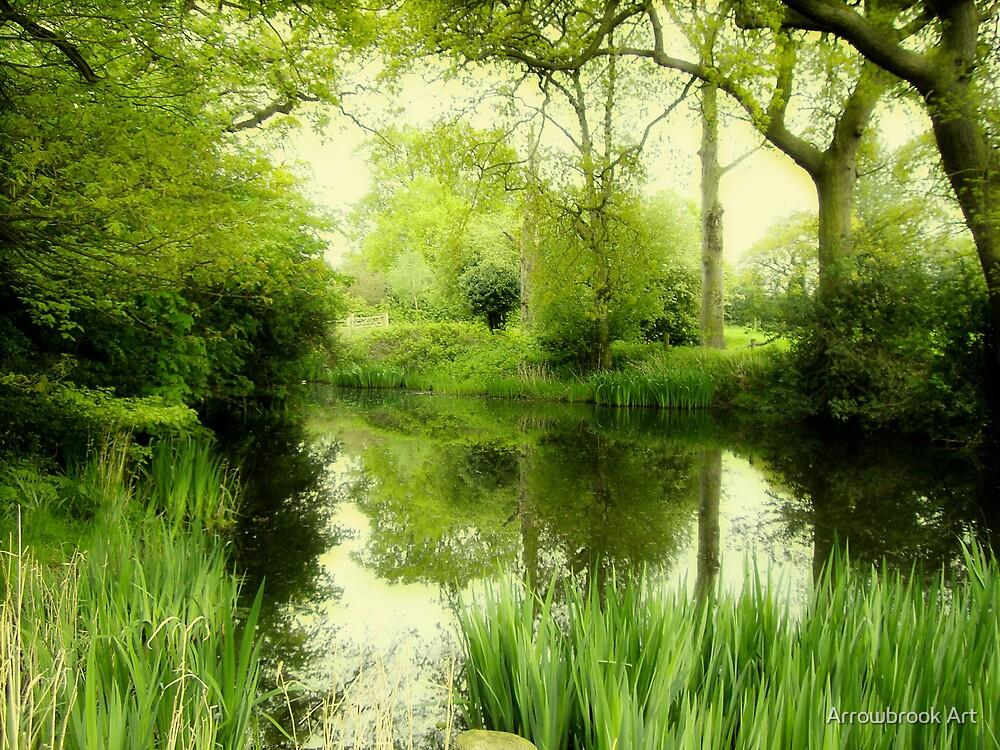 The Village Pond by John Brotheridge