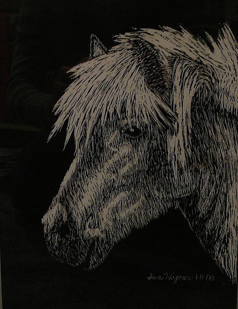 Horse by sara2442