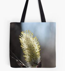Back Lit Pussywillow Tote Bag