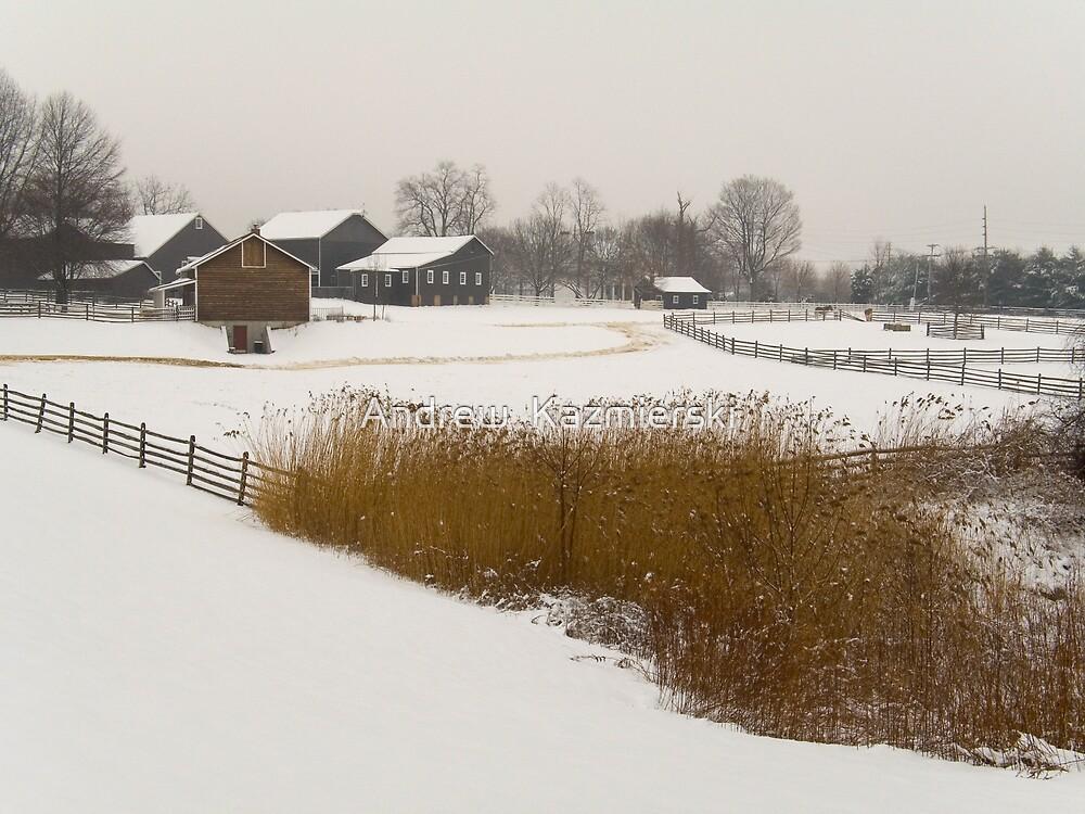 Snowy Farm by andykazie