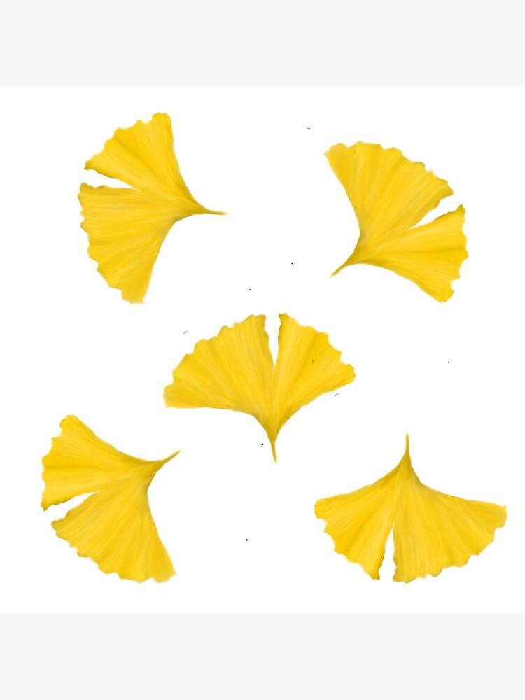 Ginko Leaves by merrkat