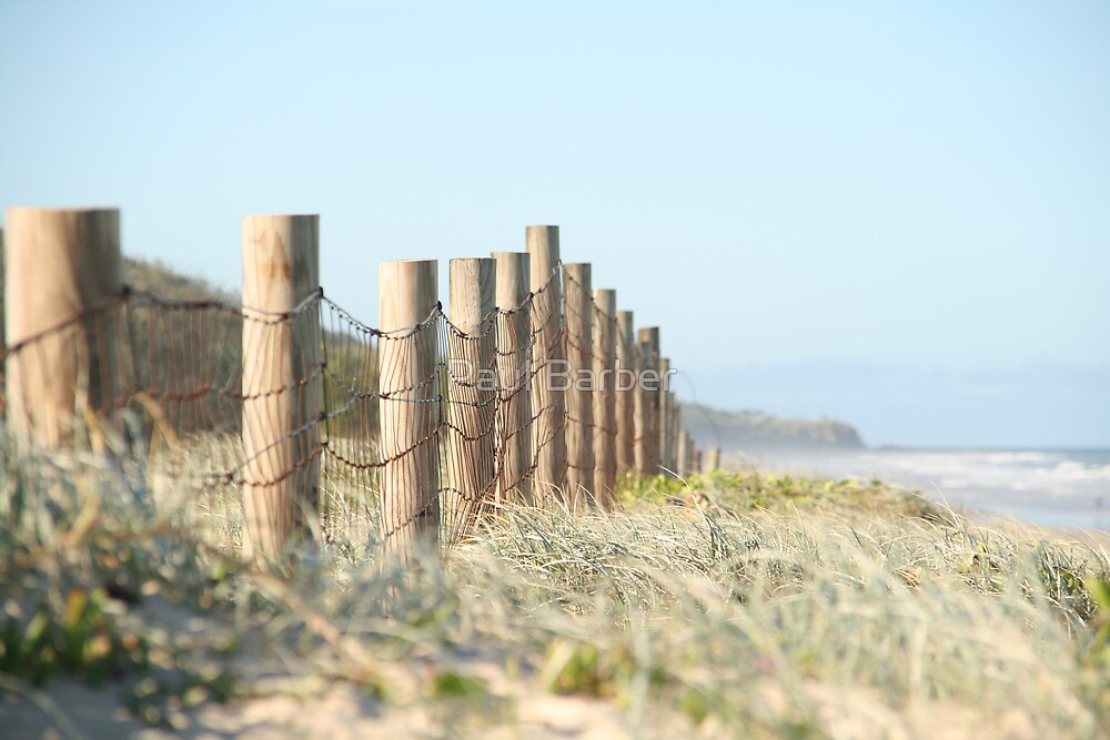 Beached fence by Paul Barber